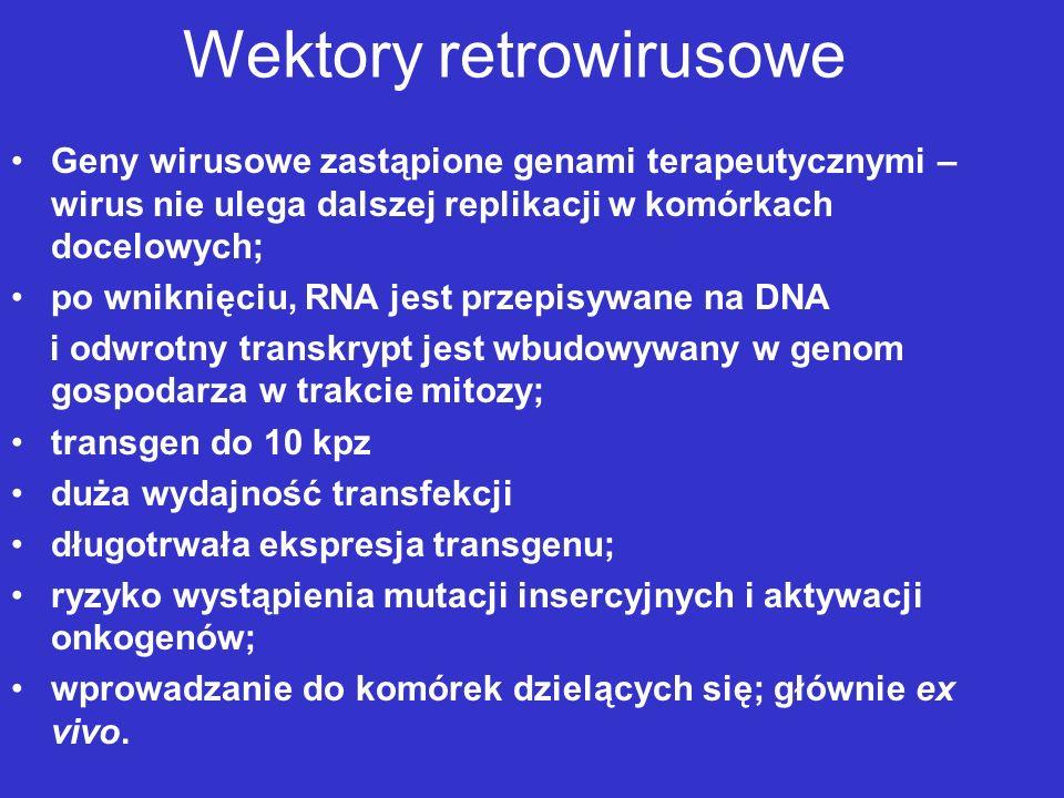 Wektory retrowirusowe