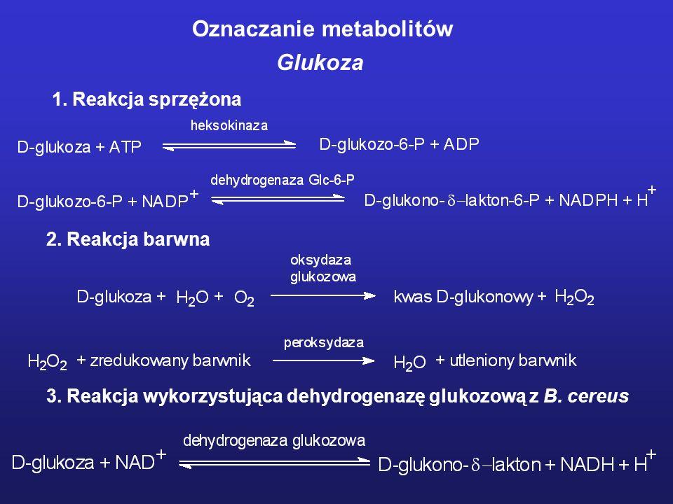 Oznaczanie metabolitów