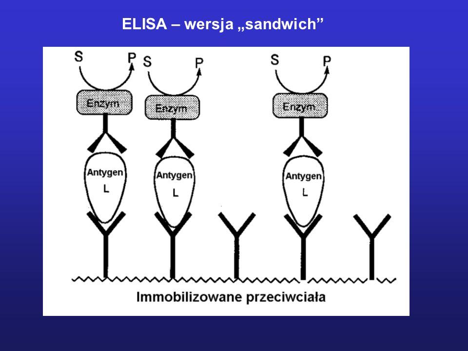 """ELISA – wersja """"sandwich"""