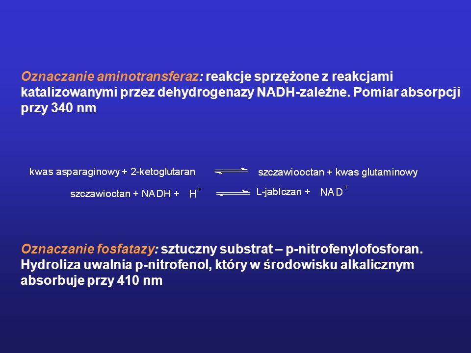Oznaczanie aminotransferaz: reakcje sprzężone z reakcjami