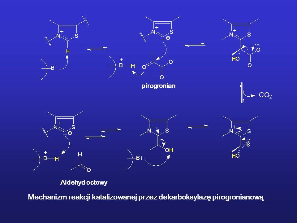 Mechanizm reakcji katalizowanej przez dekarboksylazę pirogronianową
