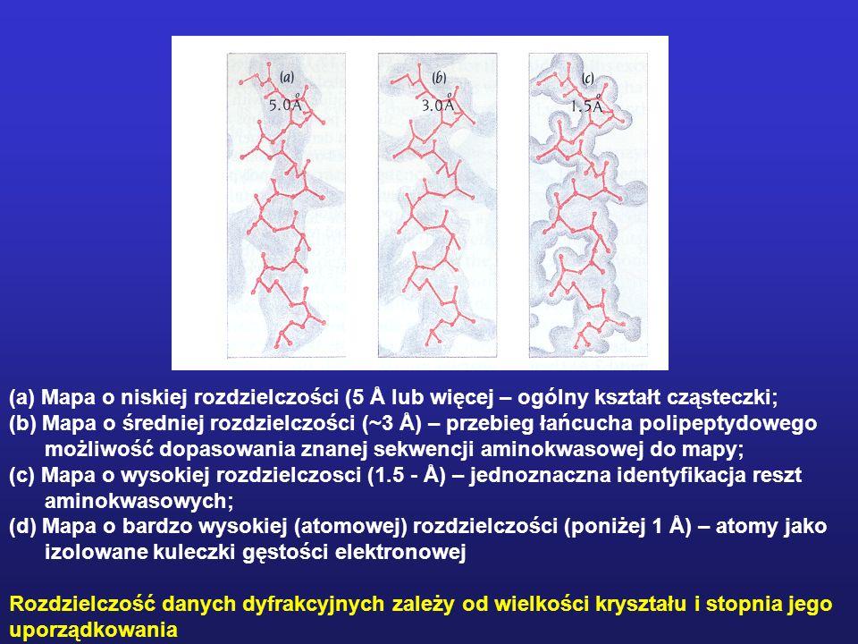 (a) Mapa o niskiej rozdzielczości (5 Å lub więcej – ogólny kształt cząsteczki;