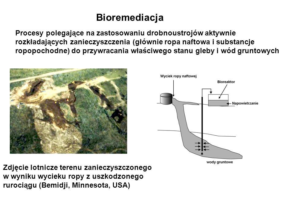 BioremediacjaProcesy polegające na zastosowaniu drobnoustrojów aktywnie. rozkładających zanieczyszczenia (głównie ropa naftowa i substancje.