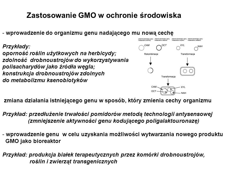 Zastosowanie GMO w ochronie środowiska