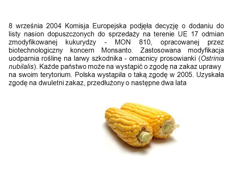 8 września 2004 Komisja Europejska podjęła decyzję o dodaniu do listy nasion dopuszczonych do sprzedaży na terenie UE 17 odmian zmodyfikowanej kukurydzy - MON 810, opracowanej przez biotechnologiczny koncern Monsanto. Zastosowana modyfikacja uodparnia roślinę na larwy szkodnika - omacnicy prosowianki (Ostrinia nubilalis). Każde państwo może na wystąpić o zgodę na zakaz uprawy