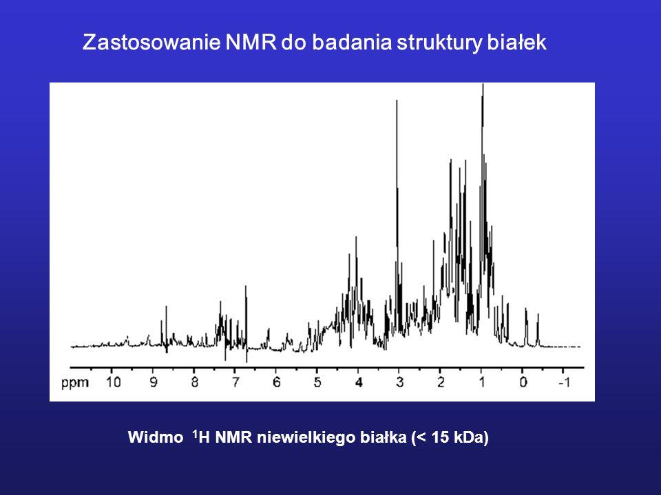 Zastosowanie NMR do badania struktury białek