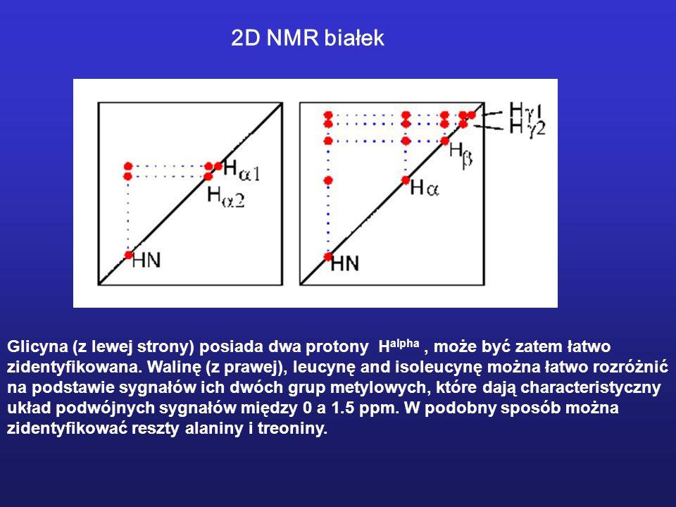 2D NMR białek Glicyna (z lewej strony) posiada dwa protony Halpha , może być zatem łatwo.