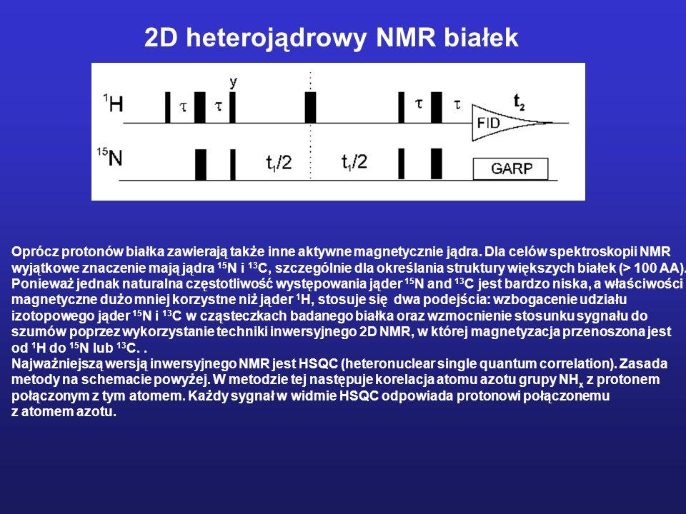 2D heterojądrowy NMR białek