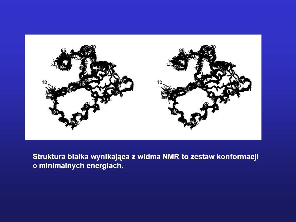 Struktura białka wynikająca z widma NMR to zestaw konformacji