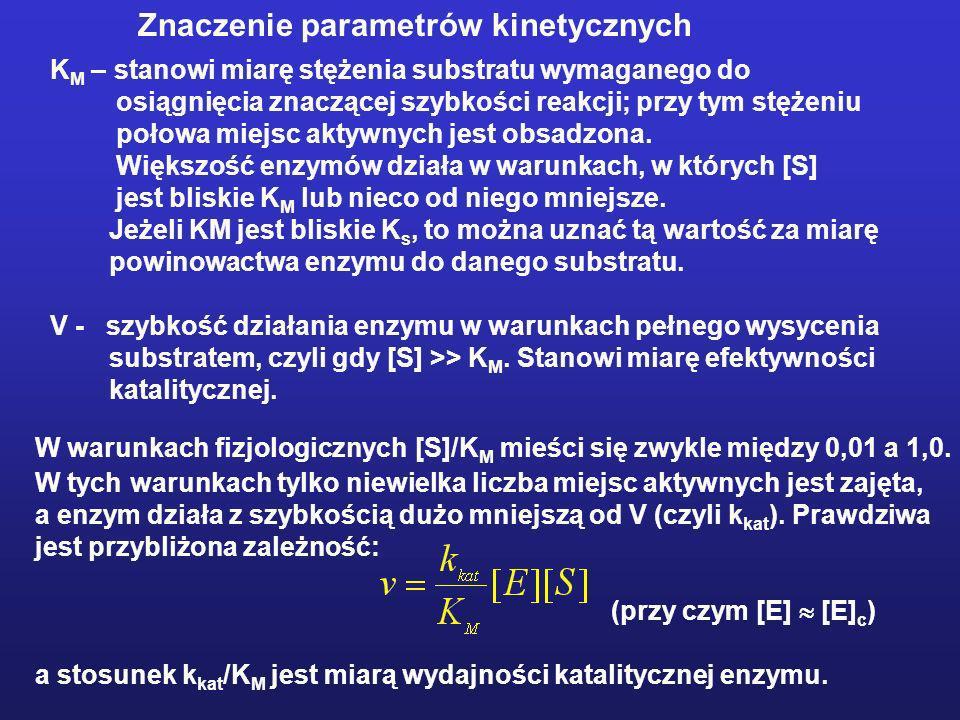 Znaczenie parametrów kinetycznych