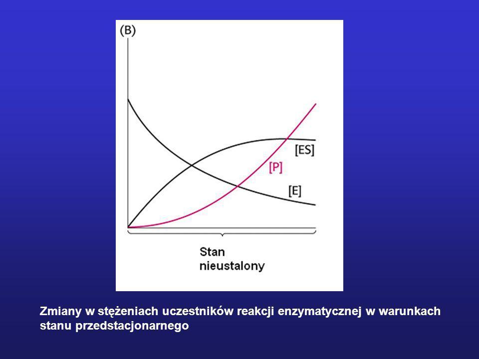 Zmiany w stężeniach uczestników reakcji enzymatycznej w warunkach