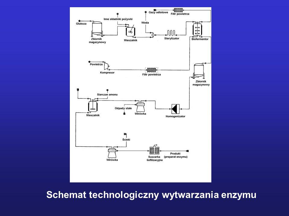 Schemat technologiczny wytwarzania enzymu
