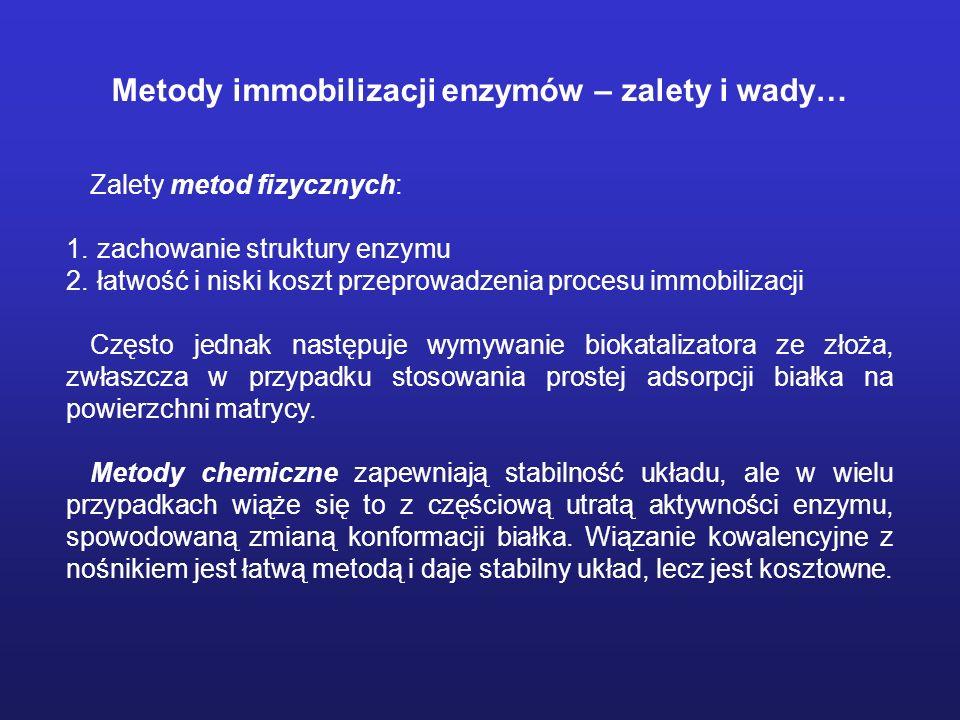 Metody immobilizacji enzymów – zalety i wady…