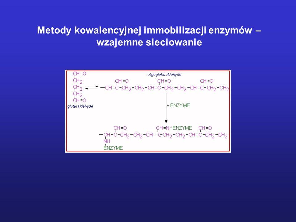 Metody kowalencyjnej immobilizacji enzymów – wzajemne sieciowanie