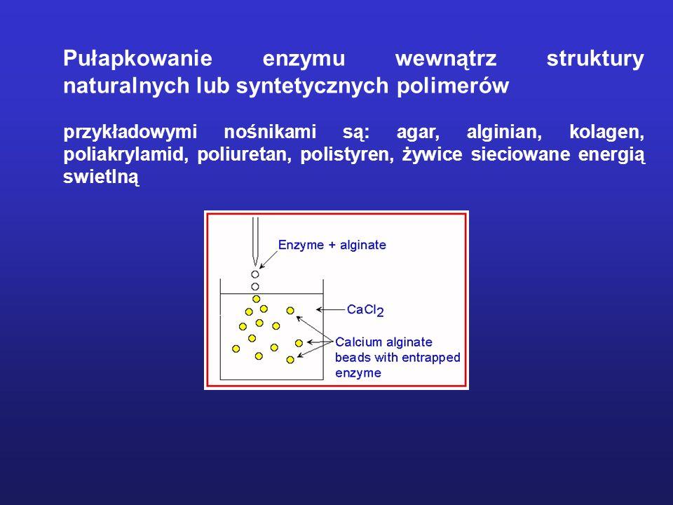 Pułapkowanie enzymu wewnątrz struktury naturalnych lub syntetycznych polimerów