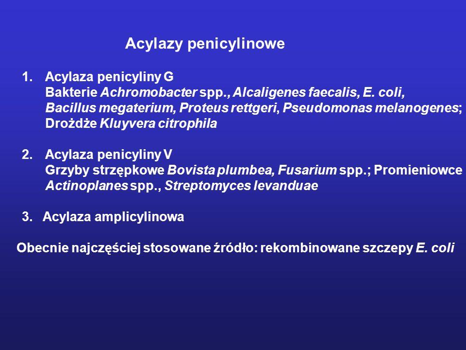 Acylazy penicylinowe Acylaza penicyliny G