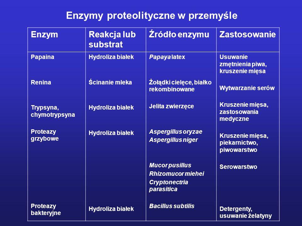 Enzymy proteolityczne w przemyśle