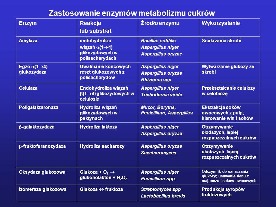 Zastosowanie enzymów metabolizmu cukrów