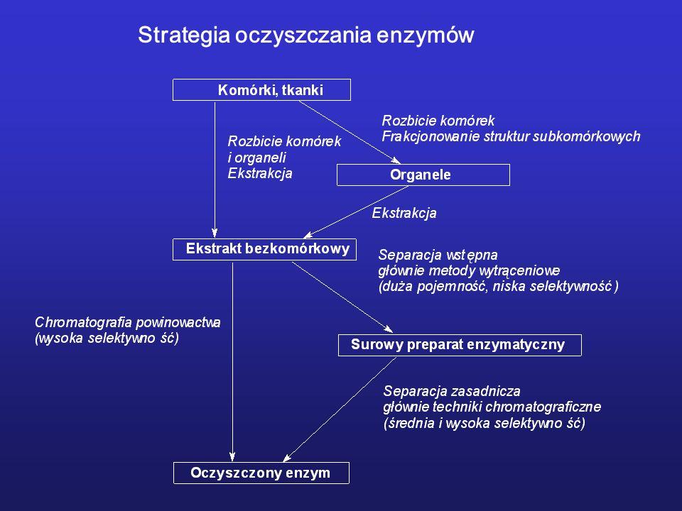 Strategia oczyszczania enzymów
