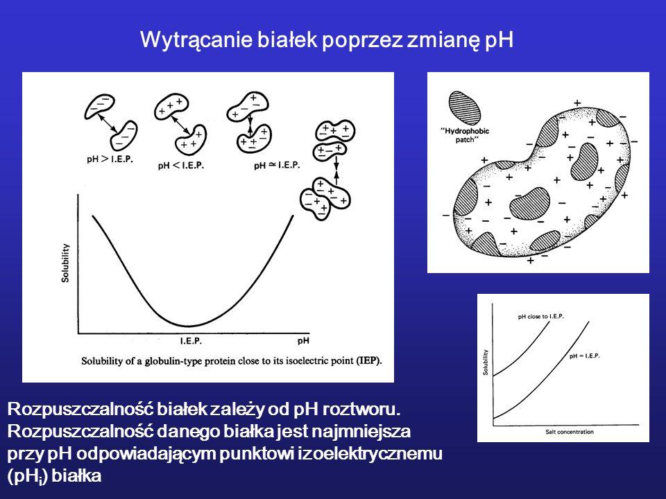 Wytrącanie białek poprzez zmianę pH