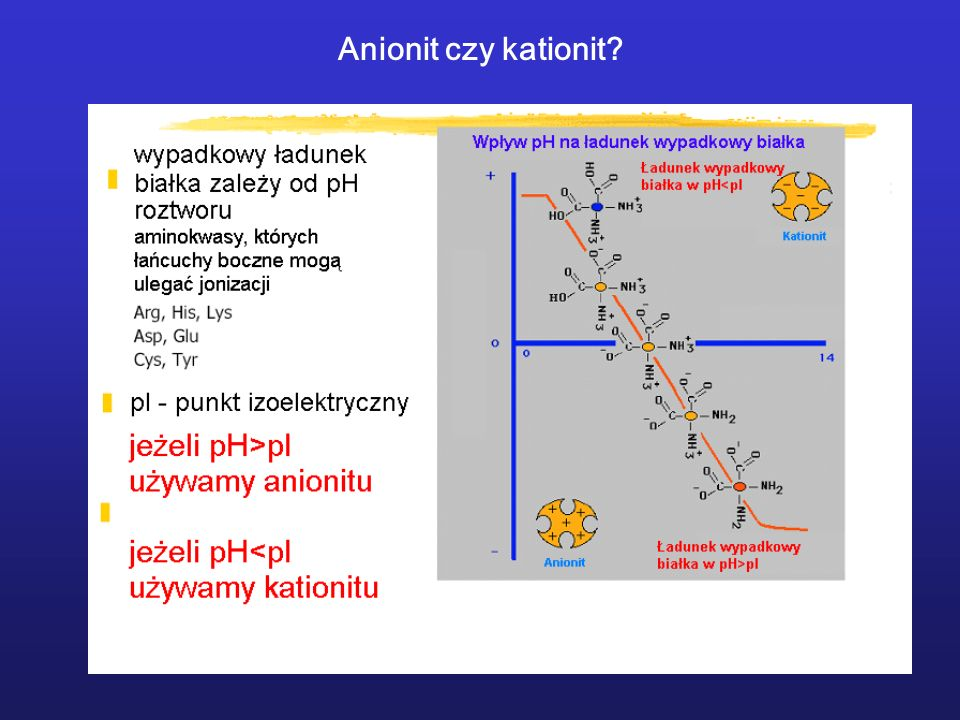 Anionit czy kationit