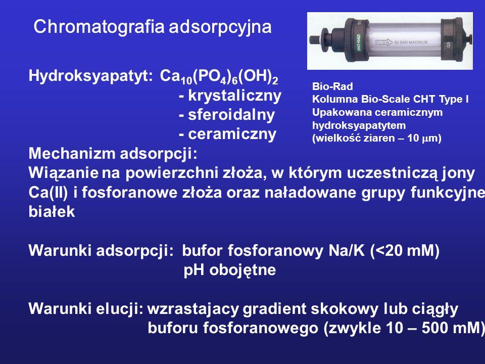 Chromatografia adsorpcyjna