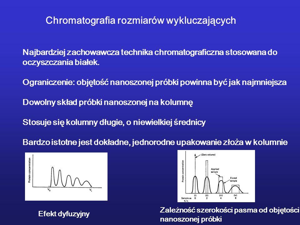 Chromatografia rozmiarów wykluczających