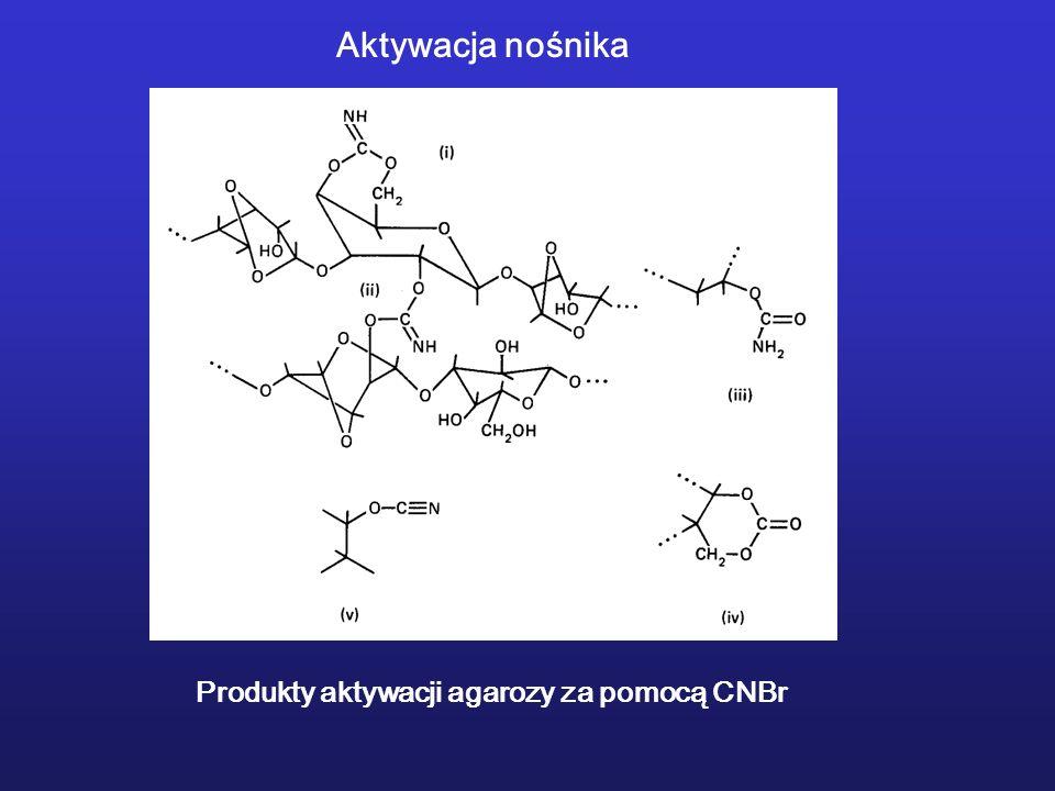 Aktywacja nośnika Produkty aktywacji agarozy za pomocą CNBr