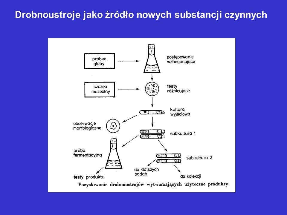 Drobnoustroje jako źródło nowych substancji czynnych