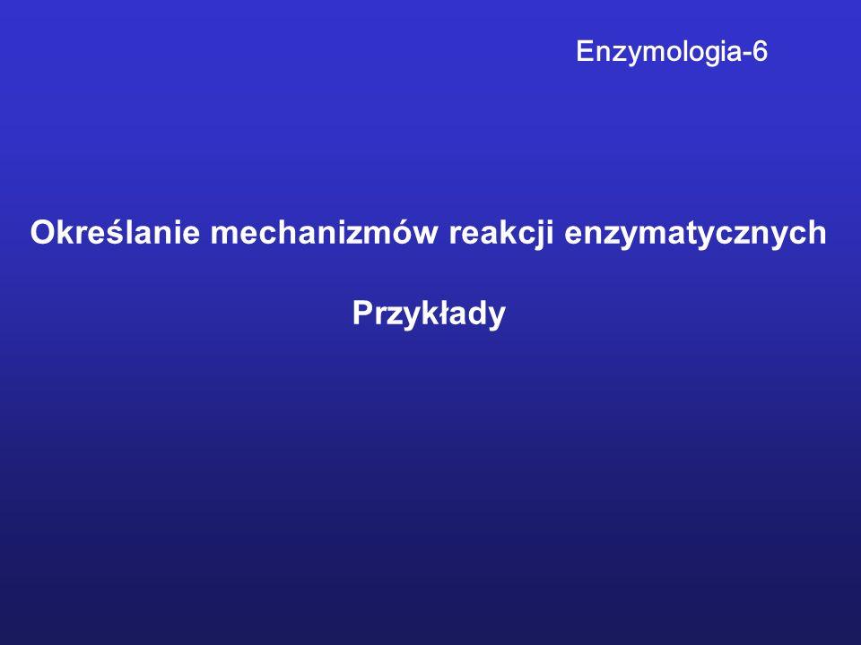 Określanie mechanizmów reakcji enzymatycznych