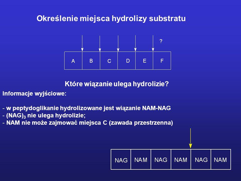 Określenie miejsca hydrolizy substratu