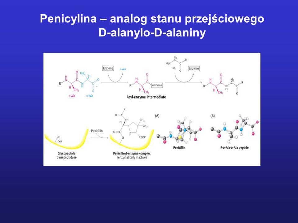 Penicylina – analog stanu przejściowego