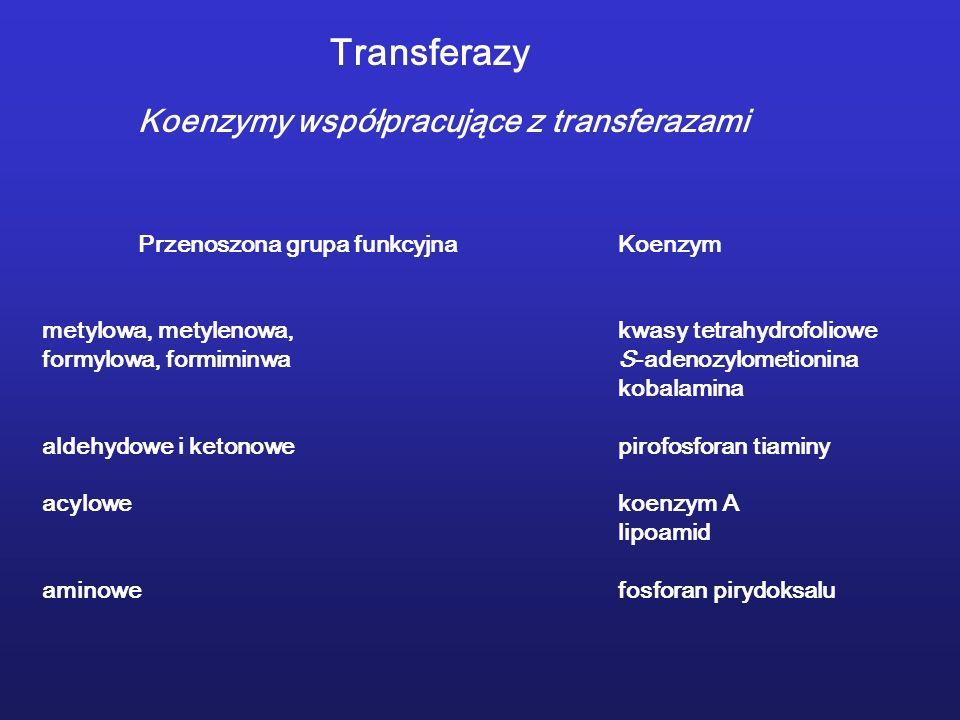 Transferazy Koenzymy współpracujące z transferazami