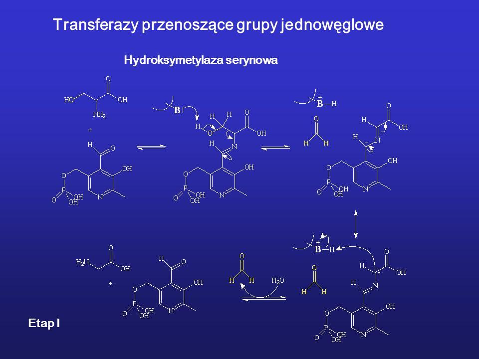 Transferazy przenoszące grupy jednowęglowe