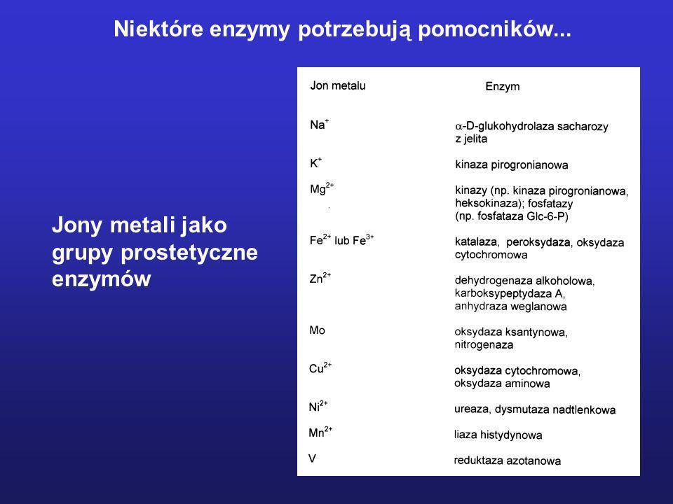 Niektóre enzymy potrzebują pomocników...