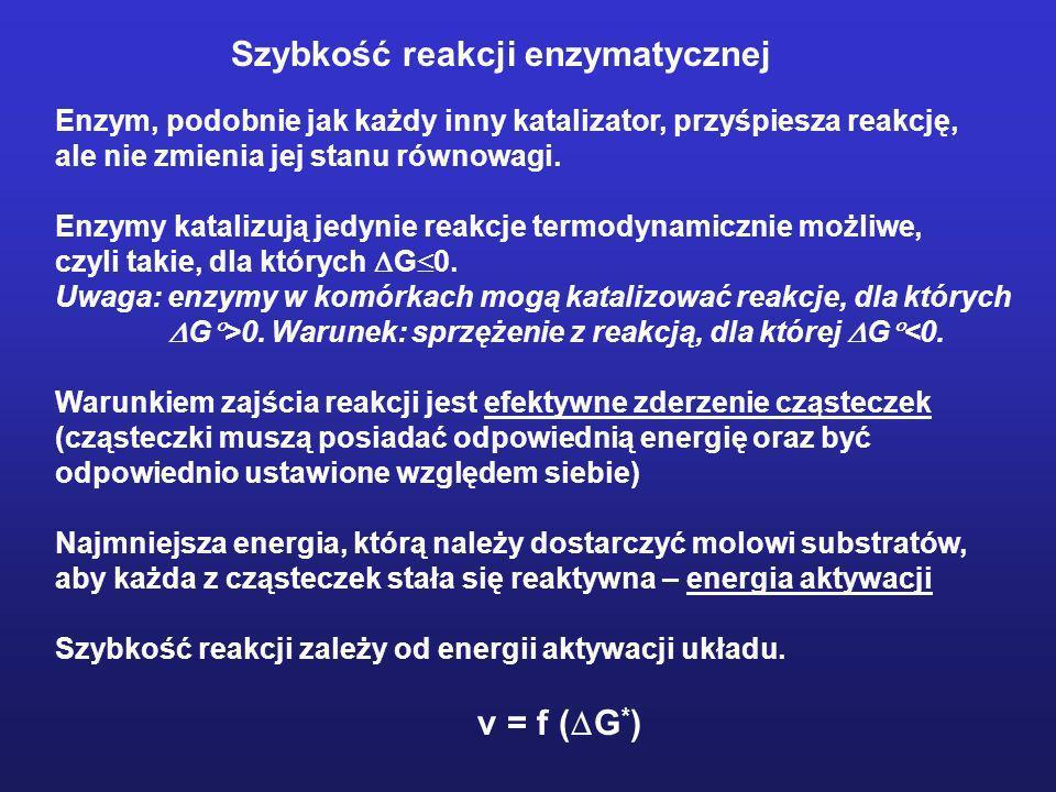 Szybkość reakcji enzymatycznej