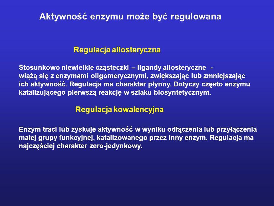 Aktywność enzymu może być regulowana