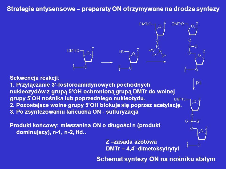 Strategie antysensowe – preparaty ON otrzymywane na drodze syntezy