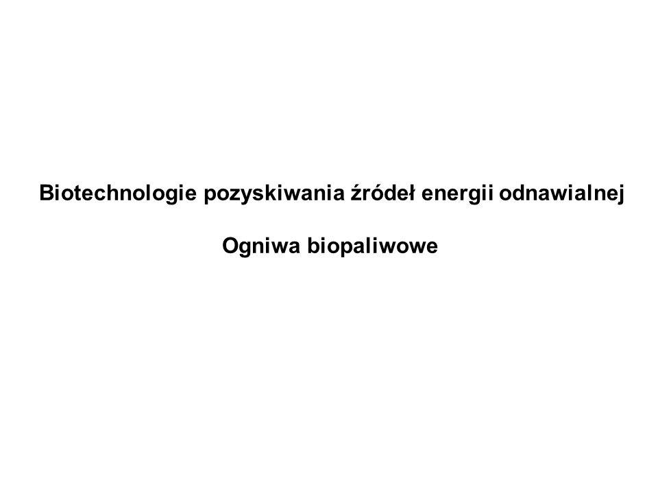 Biotechnologie pozyskiwania źródeł energii odnawialnej