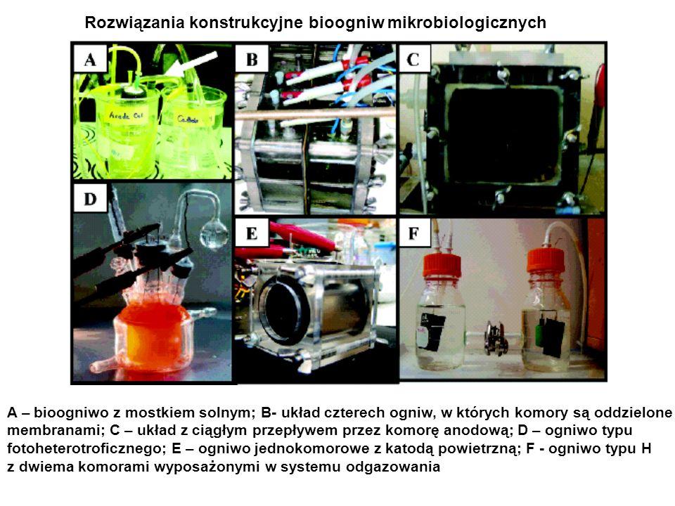 Rozwiązania konstrukcyjne bioogniw mikrobiologicznych