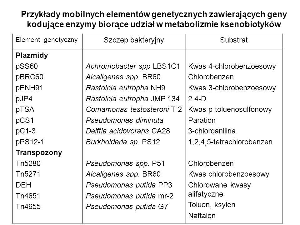 Przykłady mobilnych elementów genetycznych zawierających geny kodujące enzymy biorące udział w metabolizmie ksenobiotyków