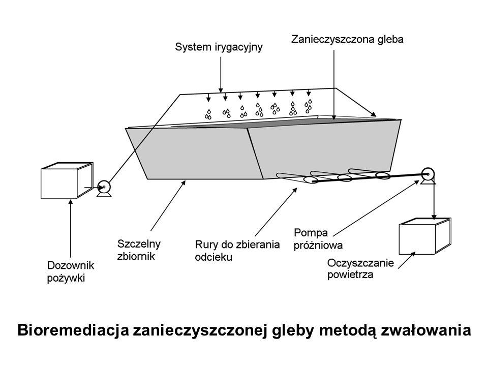 Bioremediacja zanieczyszczonej gleby metodą zwałowania