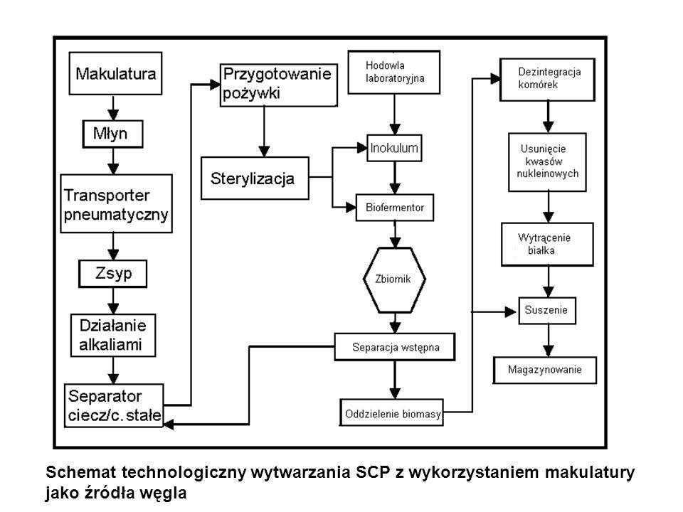 Schemat technologiczny wytwarzania SCP z wykorzystaniem makulatury