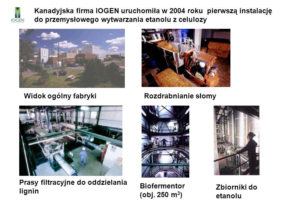 Kanadyjska firma IOGEN uruchomiła w 2004 roku pierwszą instalację