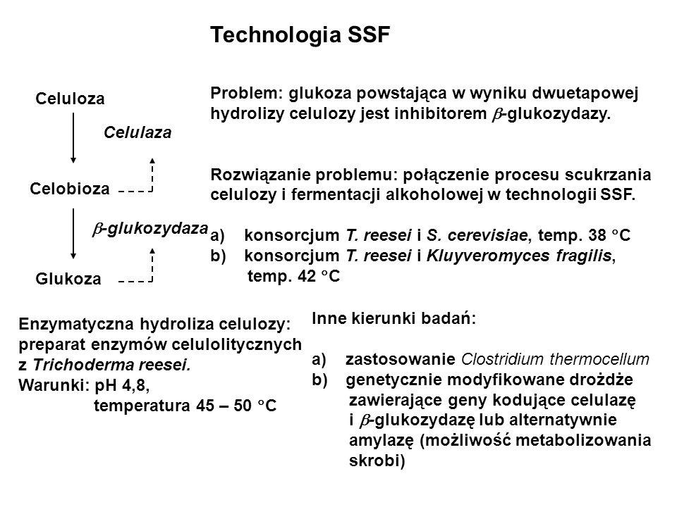 Technologia SSF Problem: glukoza powstająca w wyniku dwuetapowej