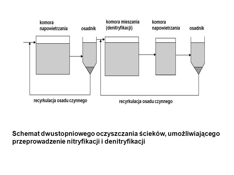 Schemat dwustopniowego oczyszczania ścieków, umożliwiającego