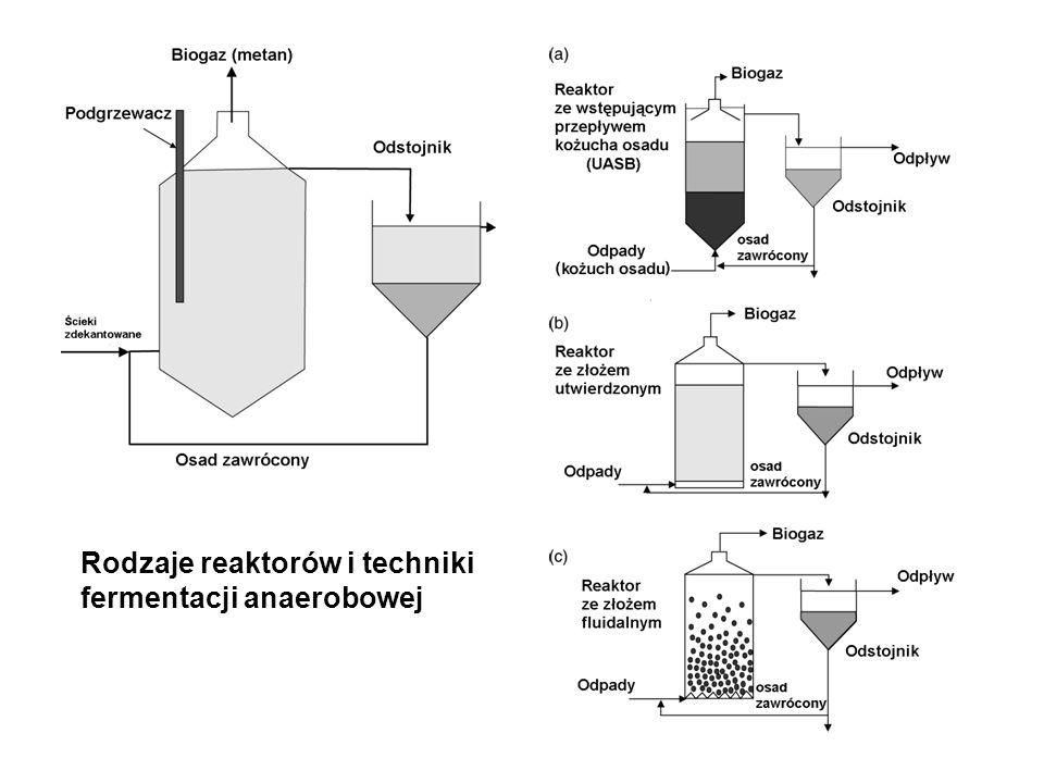 Rodzaje reaktorów i techniki