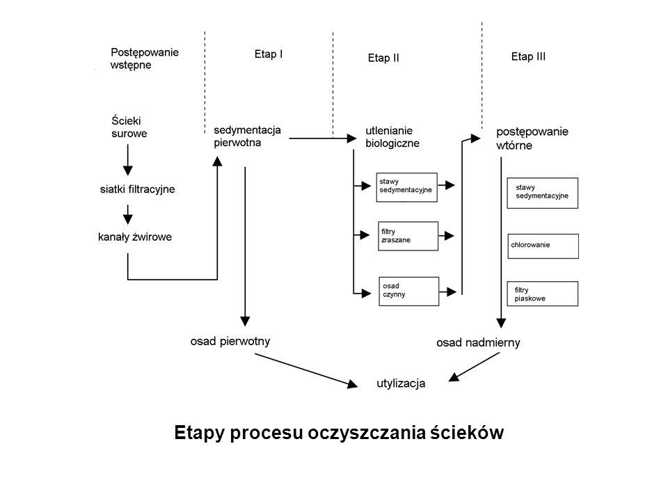 Etapy procesu oczyszczania ścieków
