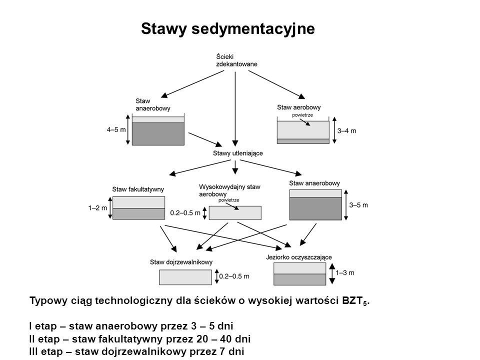 Stawy sedymentacyjne Typowy ciąg technologiczny dla ścieków o wysokiej wartości BZT5. I etap – staw anaerobowy przez 3 – 5 dni.