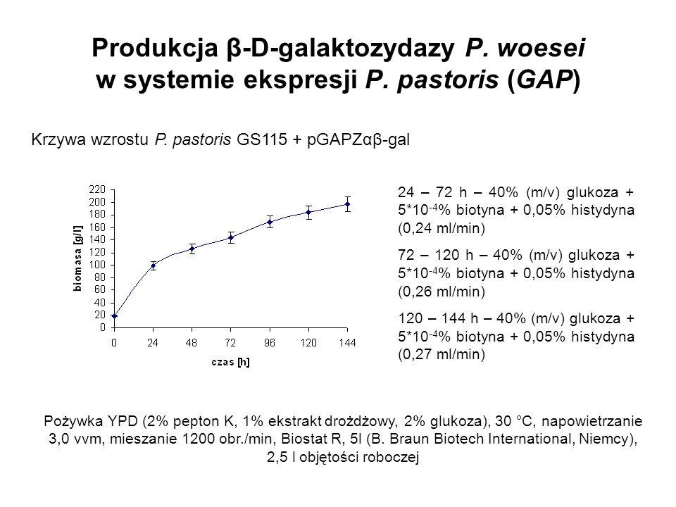 Produkcja β-D-galaktozydazy P. woesei w systemie ekspresji P